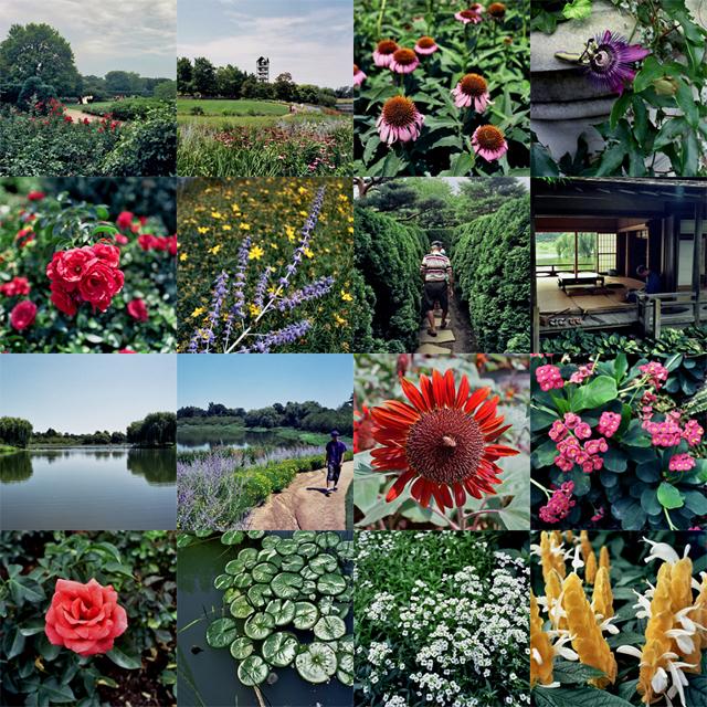 http://stevetwardowski.com/files/gimgs/10_botanic-gardensml.jpg